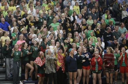 Ursuline fans cheer on the Lions.